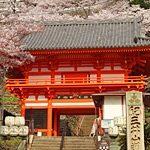 歴史探訪和歌山市内コース